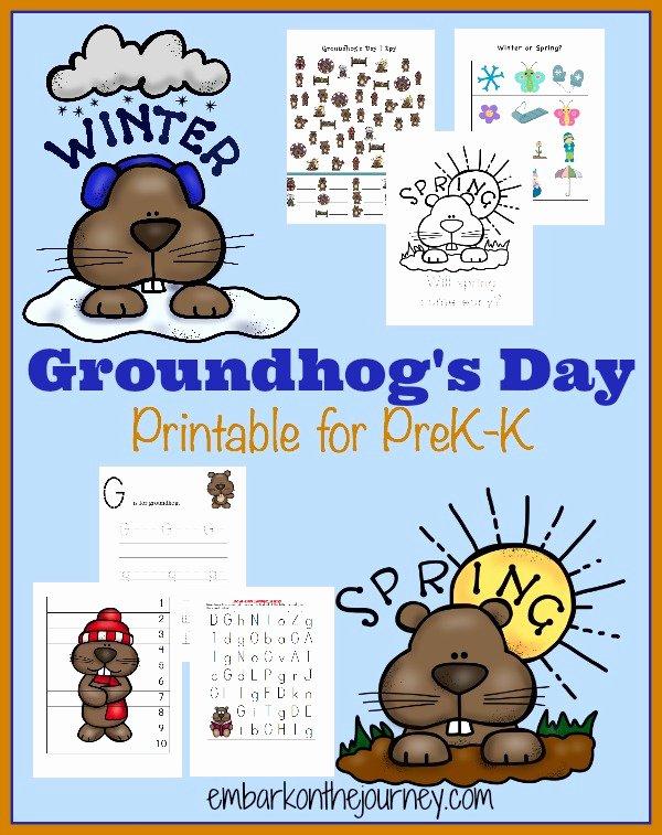 Groundhog Day Worksheets for Preschoolers Fresh Free Groundhogs Day Prek K Pack