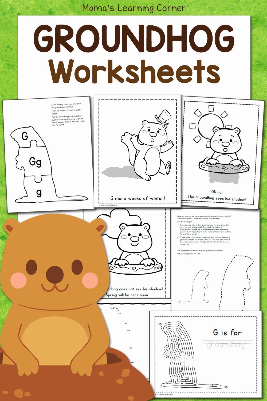 Groundhog Day Worksheets for Preschoolers Lovely Free Groundhog Day Worksheets Mamas Learning Corner