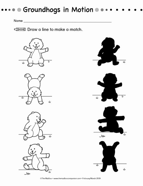 Groundhog Day Worksheets for Preschoolers Lovely Groundhog Day Worksheet Shadows the Mailbox
