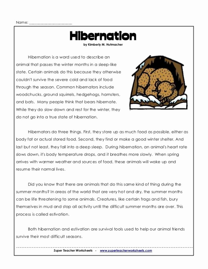 Hibernation Worksheets for Preschoolers Beautiful 3rd Hibernation Animal Worksheets touch Math with Points