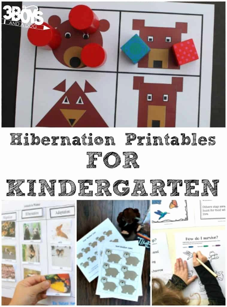 Hibernation Worksheets for Preschoolers Best Of Kindergarten Hibernation Printables – 3 Boys and A Dog – 3