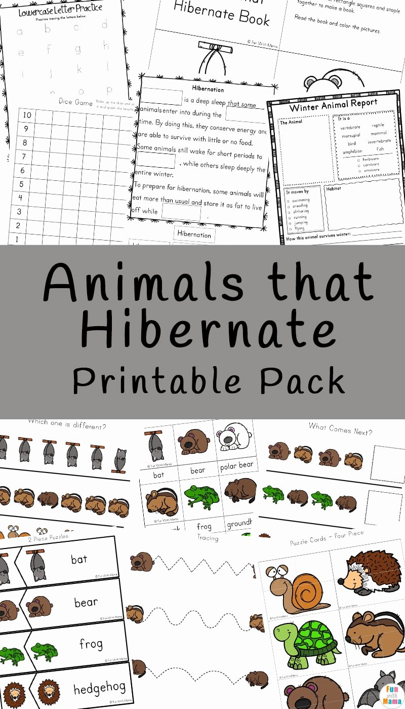 Hibernation Worksheets for Preschoolers Inspirational Animals that Hibernate Printable Pack Fun with Mama