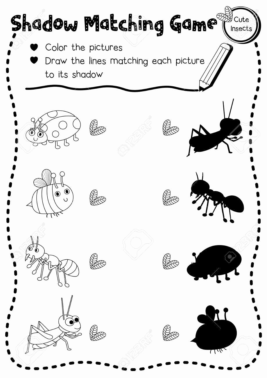 Insects Worksheets for Preschoolers New Insect Printable Imagaes top 17 Free Printable Bug Coloring