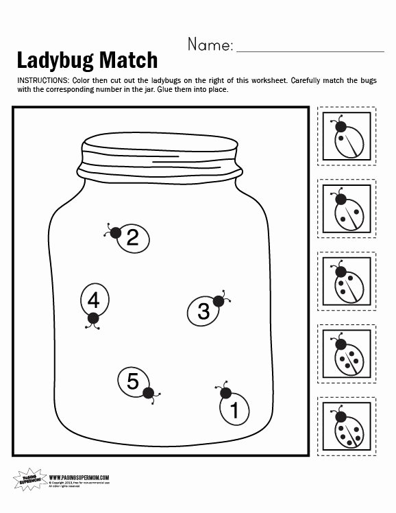 Insects Worksheets for Preschoolers New Ladybug Match Worksheet Insects Preschool Ladybugs