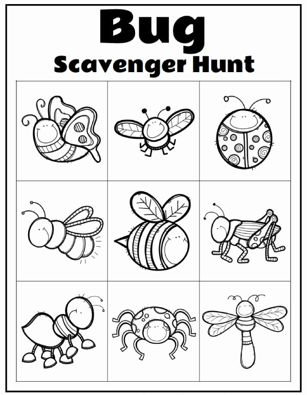 Insects Worksheets for Preschoolers New Printable Preschool Bug Activities for Learning & Fun In