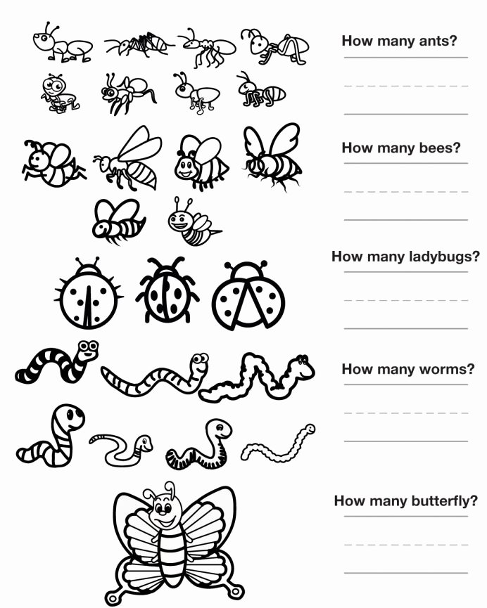 Insects Worksheets for Preschoolers New Worksheet Dc D2f15e6f2eff33a17c27a3fed Bugs