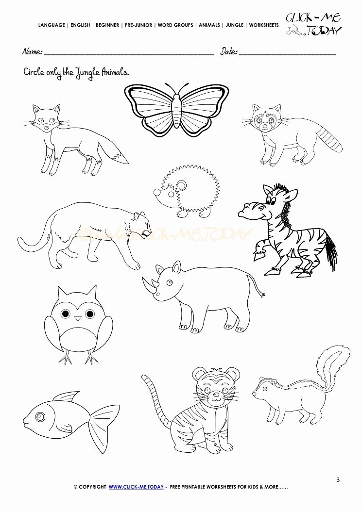 Jungle Animals Worksheets for Preschoolers Awesome Jungle Animals Worksheet Activity Sheet Circle 3