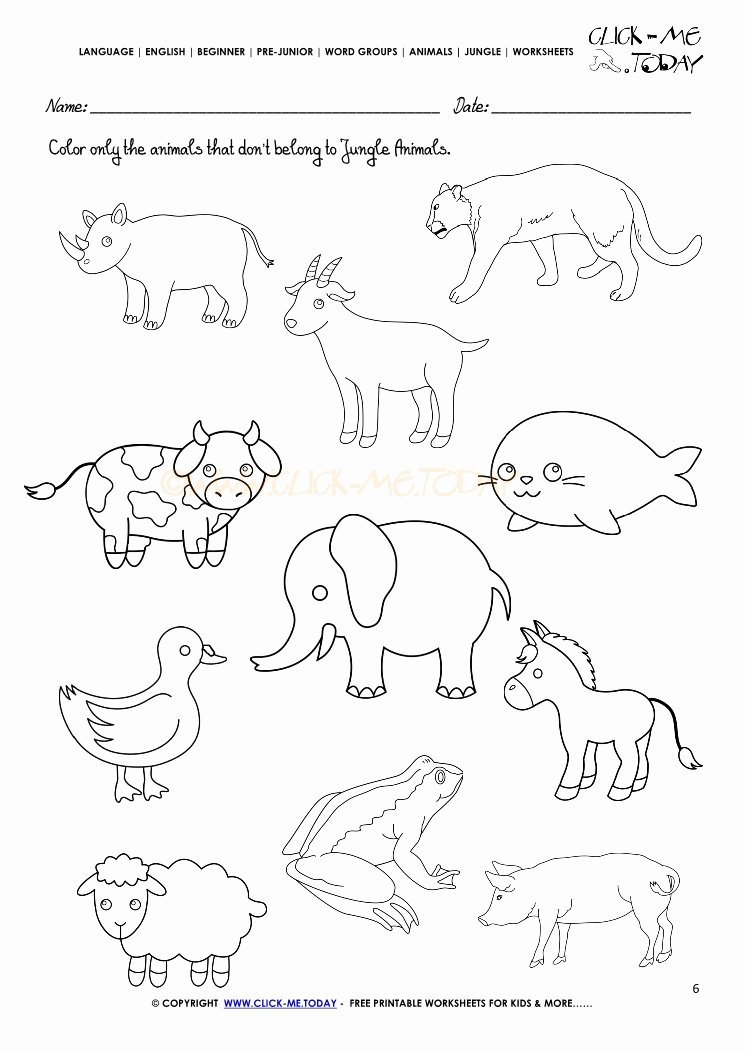 Jungle Animals Worksheets for Preschoolers Beautiful Jungle Animals Worksheet Activity Sheet Color 6