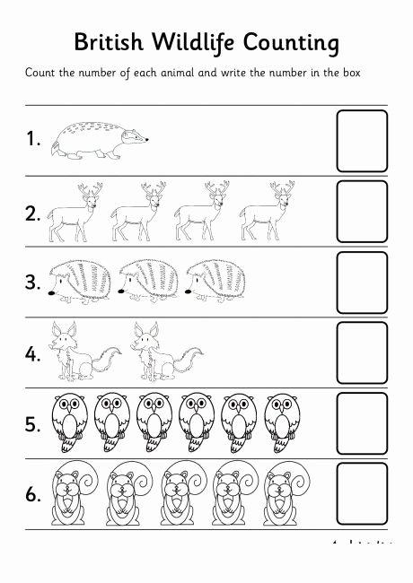 Jungle Animals Worksheets for Preschoolers Best Of Animal Number Count Worksheet for Kids