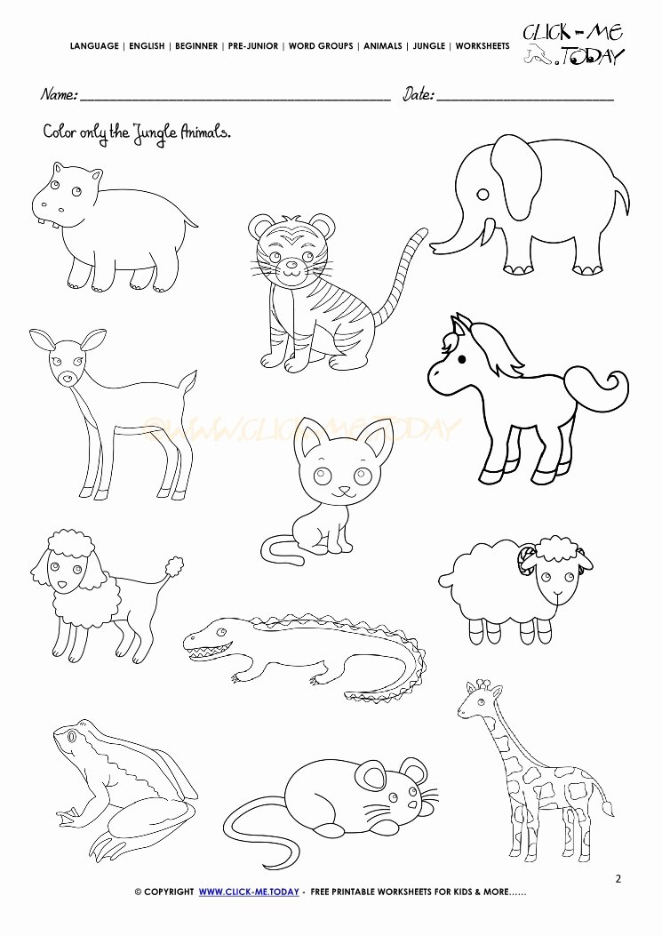 Jungle Animals Worksheets for Preschoolers Best Of Jungle Animals Printable Preschool Worksheets Jungle … – Prnt