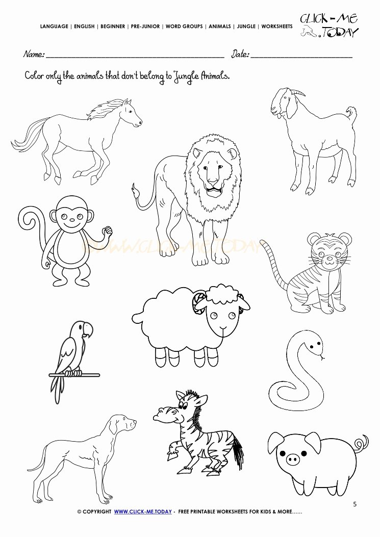 Jungle Animals Worksheets for Preschoolers top Jungle Animals Worksheet Activity Sheet Color 5