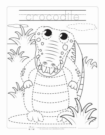 Jungle Animals Worksheets for Preschoolers Unique Safari and Jungle Animals Tracing Worksheets Itsybitsyfun