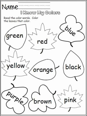 Learning Colors Worksheets for Preschoolers Fresh I Know My Colors Leaves Madebyteachers