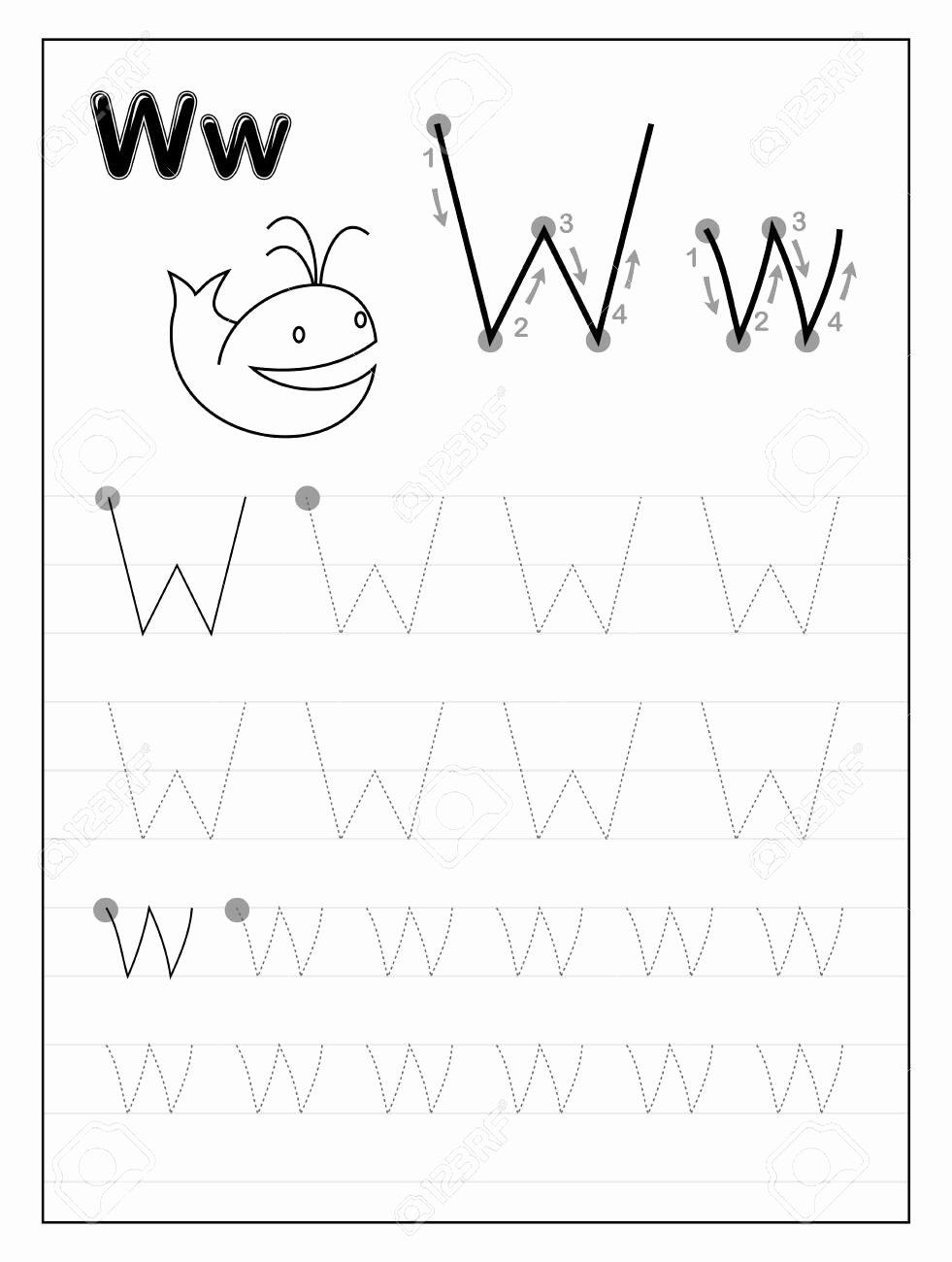 Letter W Worksheets for Preschoolers Unique Stock