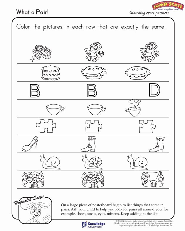 Logical Thinking Worksheets for Preschoolers New What A Pair Free Critical Thinking Worksheet for