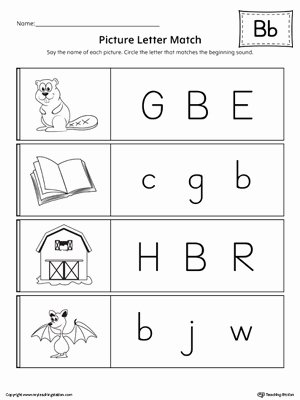 Matching Letters Worksheets for Preschoolers Lovely Picture Letter Match Letter B Worksheet