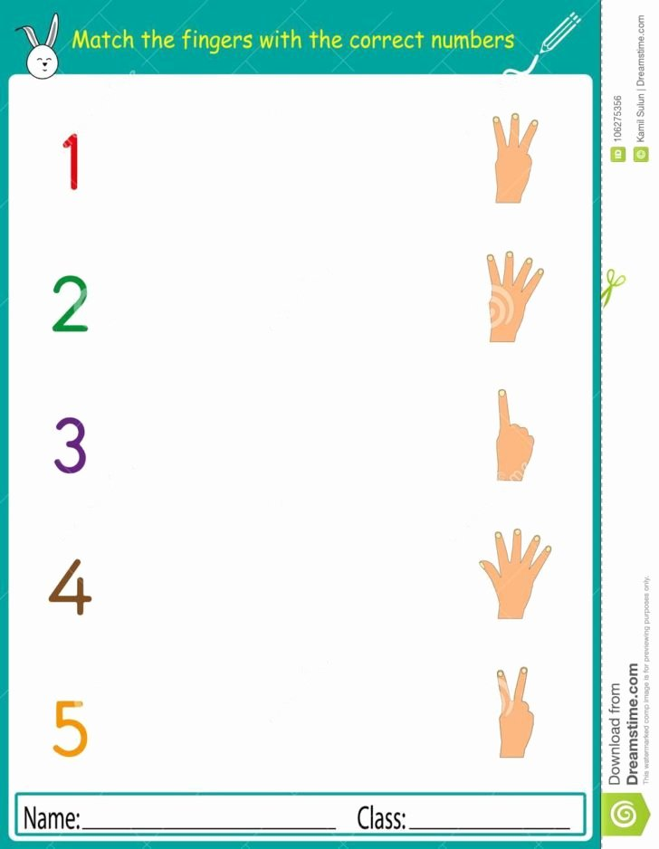 Matching Numbers Worksheets for Preschoolers Inspirational Worksheet Math Kindergartening Worksheets Printable Free