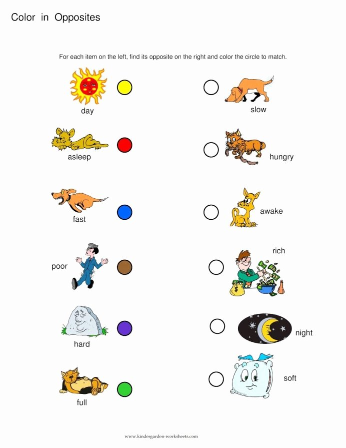 Matching Pictures Worksheets for Preschoolers Best Of Opposites Worksheets Preschool Opposite Words the