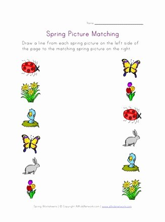 Matching Pictures Worksheets for Preschoolers Lovely Spring Picture Matching Worksheet
