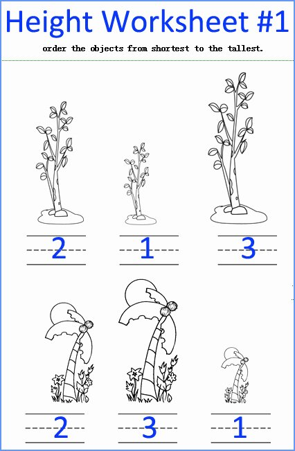 Measurement Worksheets for Preschoolers Fresh Measurement Worksheets Measuring Math Worksheets for Kids