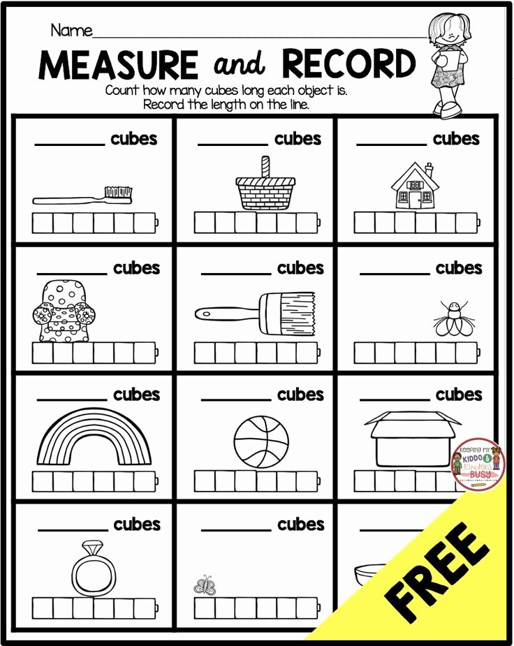 Measuring Worksheets for Preschoolers Best Of Measurement and Data Kindergarten Math Unit Freebies