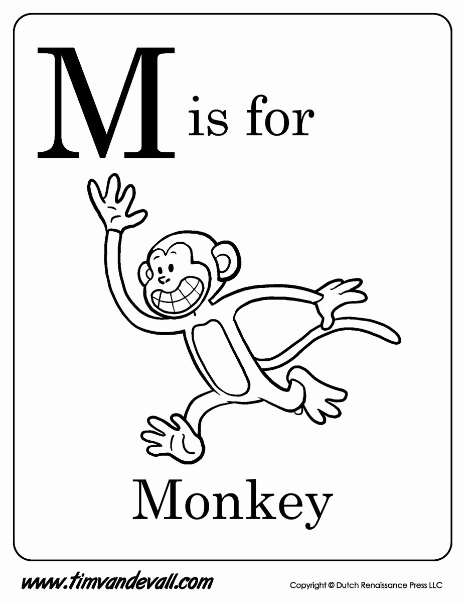 Monkey Worksheets for Preschoolers Awesome M is for Monkey Printable Tim S Printables