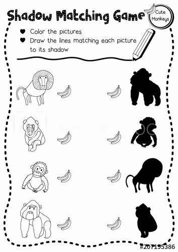 Monkey Worksheets for Preschoolers Awesome Shadow Matching Game Of Primate Monkey Animals for Preschool