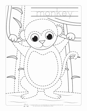 Monkey Worksheets for Preschoolers Best Of Safari and Jungle Animals Tracing Worksheets Itsybitsyfun