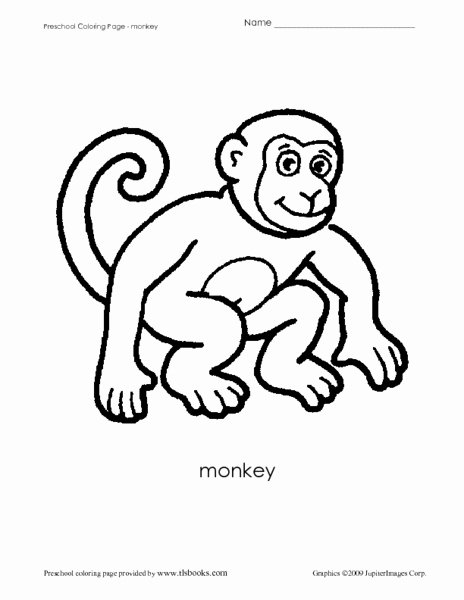 Monkey Worksheets for Preschoolers Lovely Preschool Coloring Sheet Monkey Worksheet for Pre K