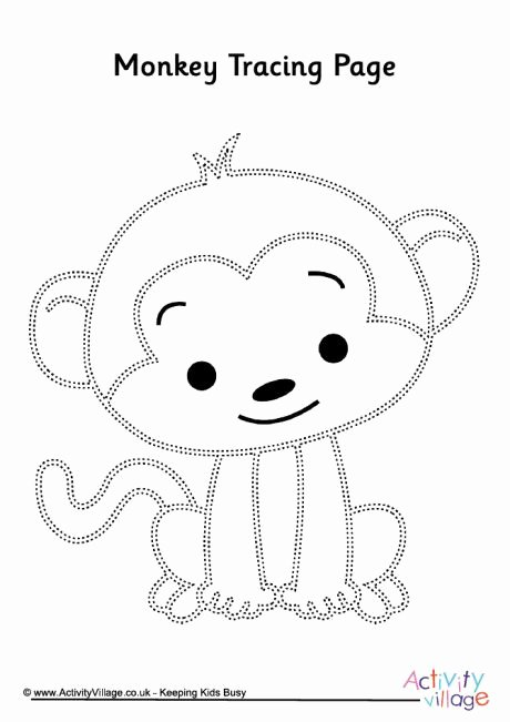 Monkey Worksheets for Preschoolers top Monkey Tracing Page