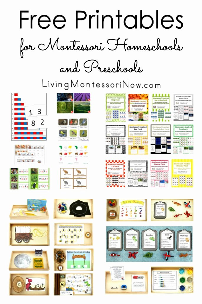 Montessori Worksheets for Preschoolers Fresh Free Printables for Montessori Homeschools and Preschools