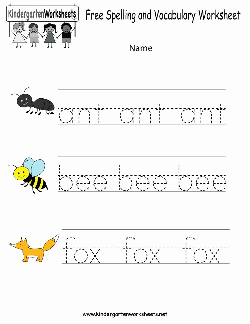 Montessori Worksheets for Preschoolers Lovely 5 Preschool Worksheets Montessori Worksheets Schools