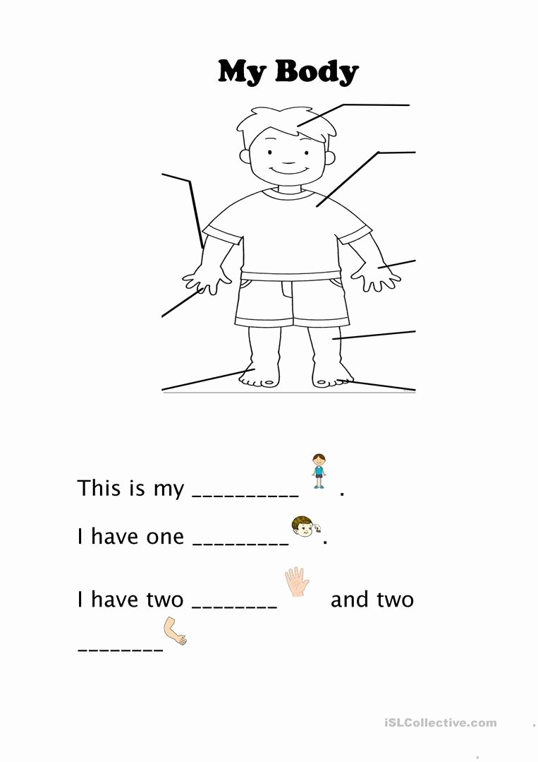 My Body Worksheets for Preschoolers Lovely My Body English Esl Worksheets for Distance Learning and