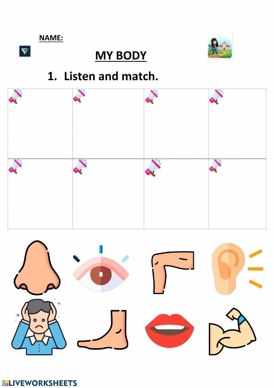 My Body Worksheets for Preschoolers New My Body 2 Preschool Interactive Worksheet