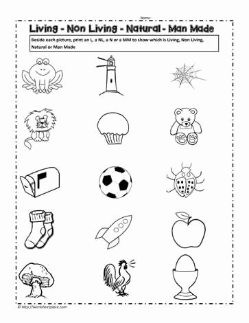 Nature Worksheets for Preschoolers Lovely Living and Non Living Things Worksheet Worksheets