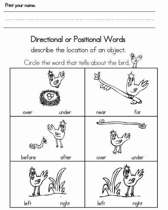 Near and Far Worksheets for Preschoolers Beautiful B3c35ad15cae32a79eeafba7b47add13 554—692