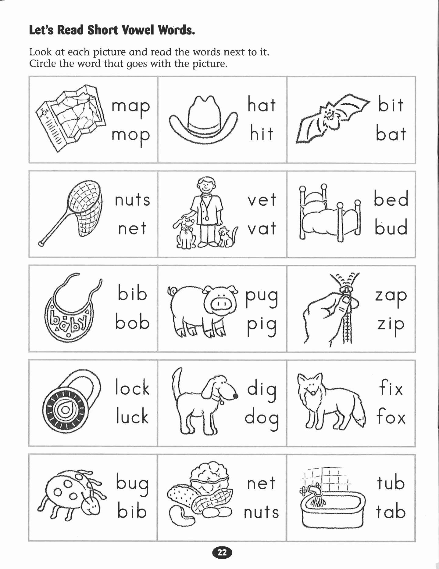 Near and Far Worksheets for Preschoolers Fresh Kindergarten Worksheets Near and Far