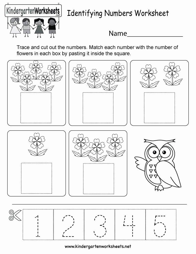 Number 19 Worksheets for Preschoolers Lovely 5 Free Preschool Kindergarten Worksheets Counting Number
