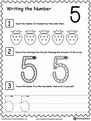 Number 5 Worksheets for Preschoolers Awesome Learn to Count and Write Number 5