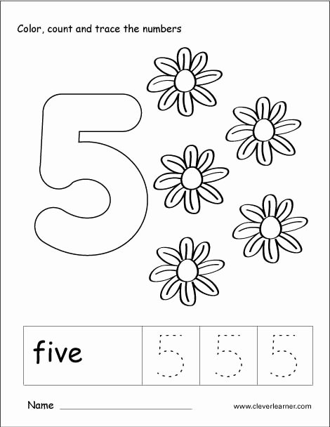 Number 5 Worksheets for Preschoolers Unique Number Five Writing Counting and Recognition Activities for