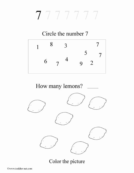 Number 7 Worksheets for Preschoolers Fresh Free Number 7 Worksheet