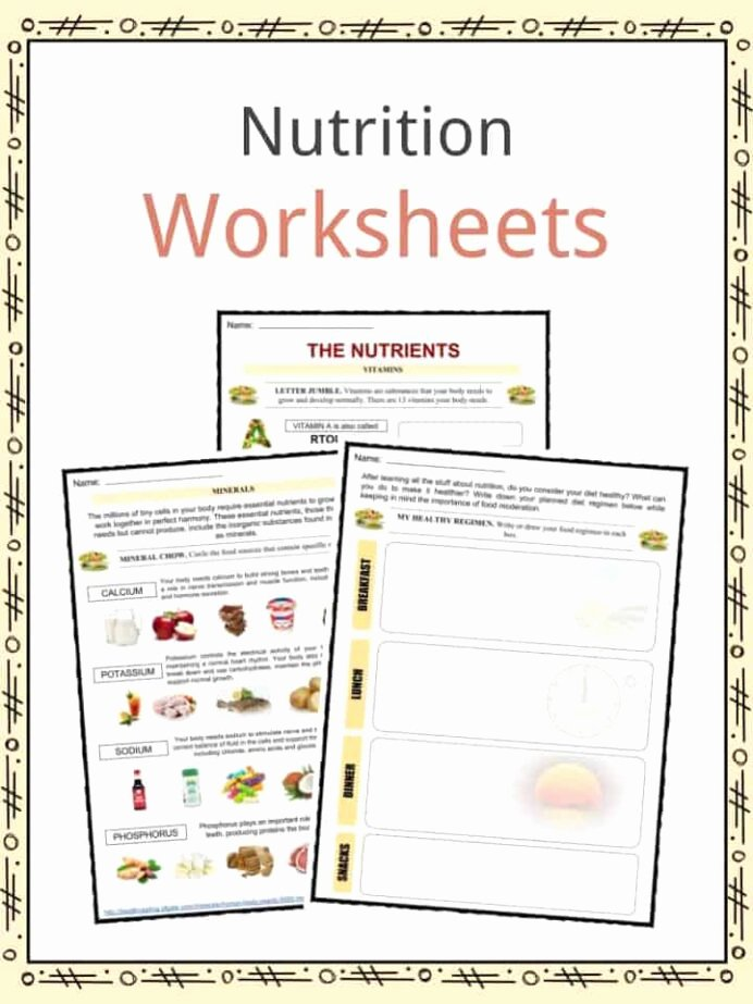 Nutrition Worksheets for Preschoolers Awesome Nutrition Facts Worksheets Information for Kids Science
