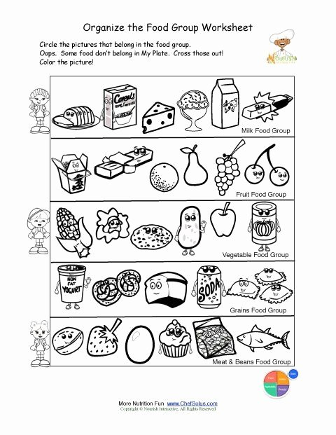 Nutrition Worksheets for Preschoolers Best Of Printable Color and sorting Food Groups