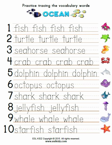 Ocean themed Worksheets for Preschoolers Awesome Ocean Activities Games and Worksheets for Kids