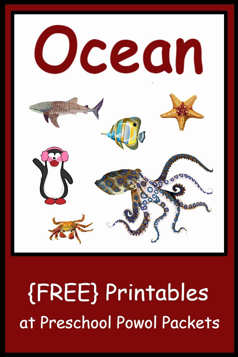 Ocean themed Worksheets for Preschoolers Fresh Free Preschool Ocean themed Printable Activities