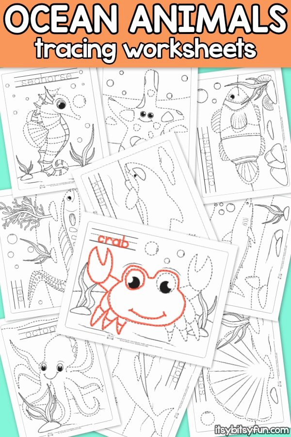 Ocean Worksheets for Preschoolers New Ocean Animals Tracing Worksheets Itsybitsyfun