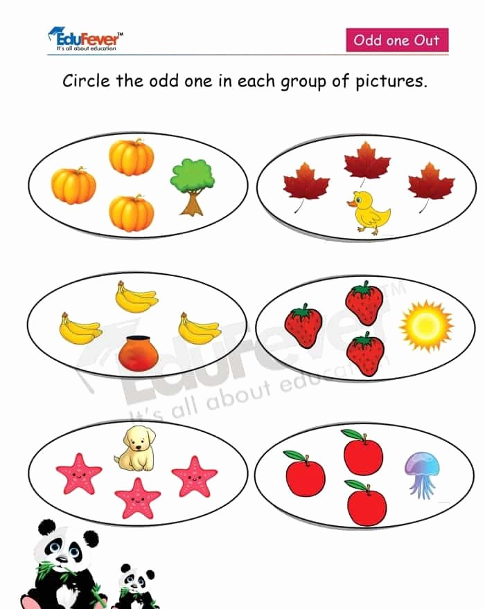 Odd One Out Worksheets for Preschoolers Inspirational Circle the Odd E Out Math Worksheets for Lkg