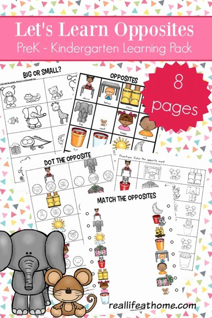 Opposite Worksheets for Preschoolers Best Of Opposites Worksheets for Kindergarten and Preschool