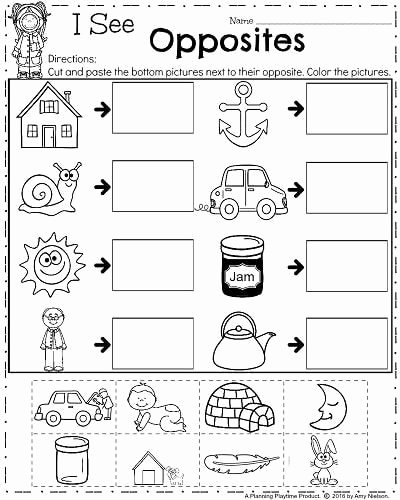 Opposite Worksheets for Preschoolers Inspirational 20 Opposites Worksheet for Kindergarten