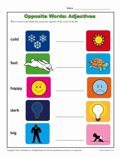 Opposite Worksheets for Preschoolers New Kindergarten Antonym Worksheet Opposite Words Adjectives